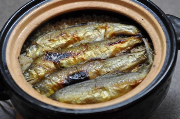 Ayu Rice Pot_1