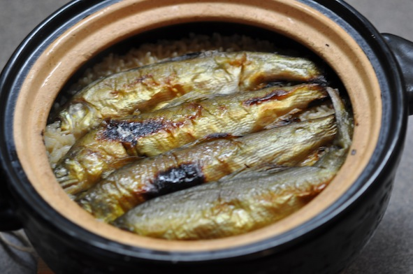 Ayu Rice Pot_1